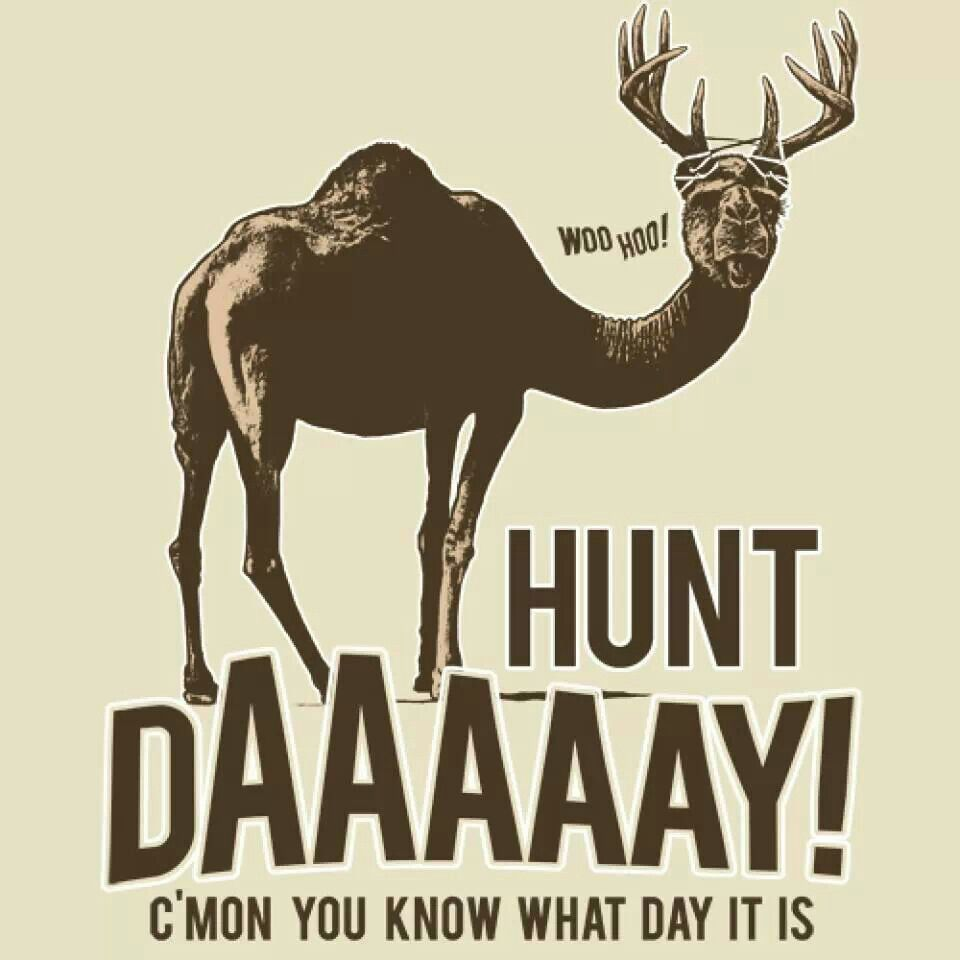 Funny Hunting Quotes Much Better  Now That's Funny S*  Pinterest