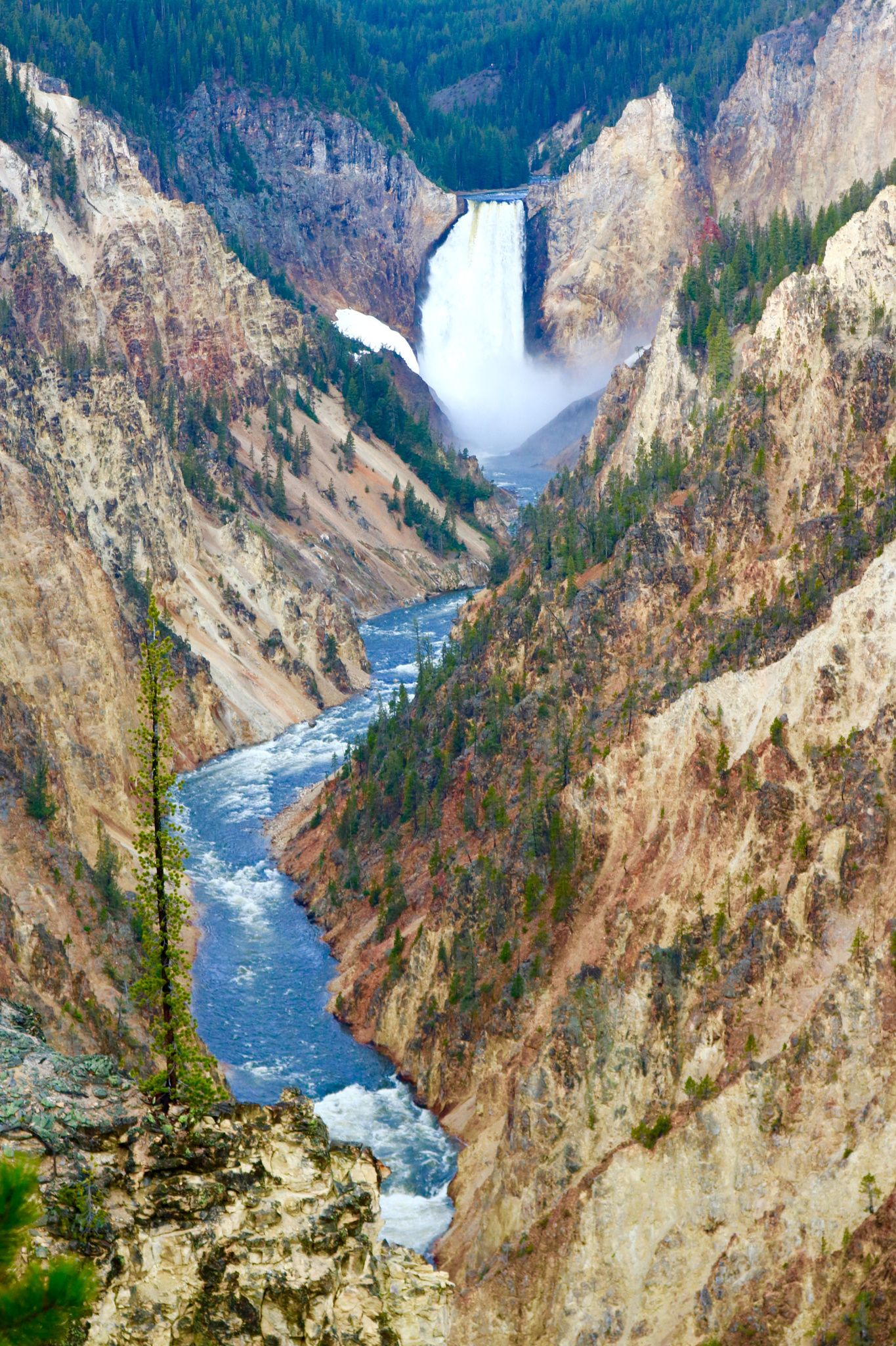 Nature at its best Artist Point Yellowstone National