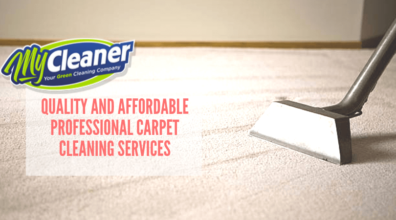 Carpet cleaning is a bore, long and strenuous process though it needs to be cleaned regularly. They are graced by the footfall of the entire household and all its esteemed guests after all.