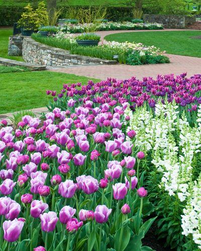 Attrayant Longwood Gardens, Kennett Square, Pennsylvania