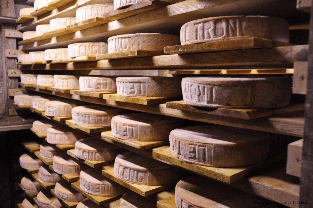 Cheese cellar in the Alps cellar