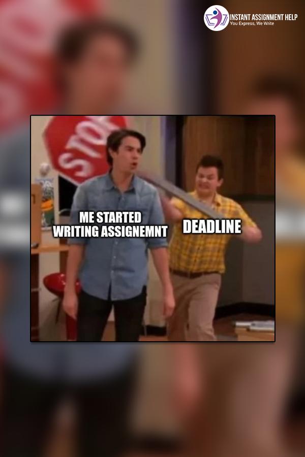 Assignment Help Au Essay Help Funny Memes Memes