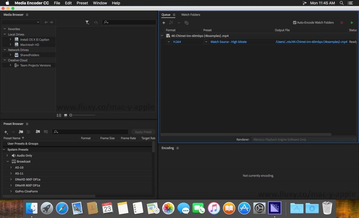 adobe creative cloud keygen media encoder