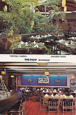Sand Dollar Restaurant And Lounge St Petersburg Florida Postcard