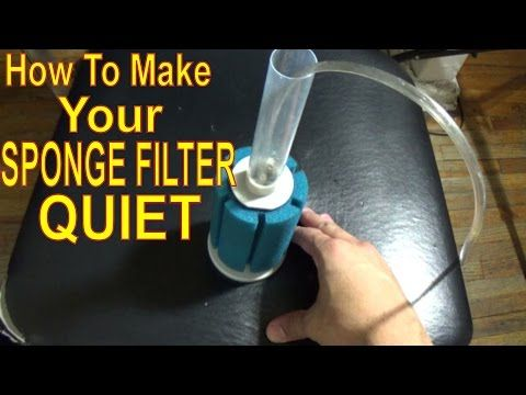 How To Make Your Sponge Filter Quiet You
