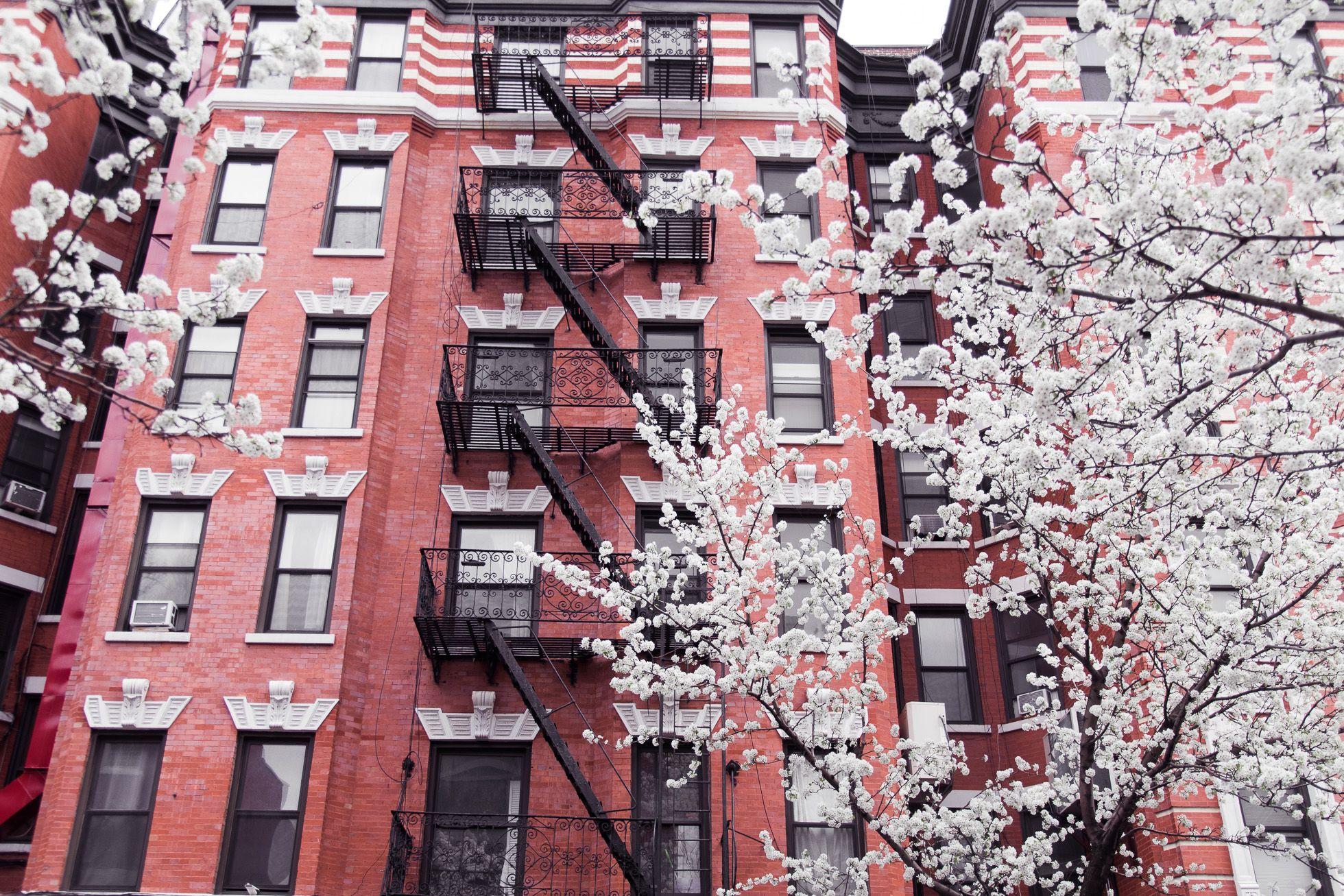Lisa-Olsson-New-York-Moments-6