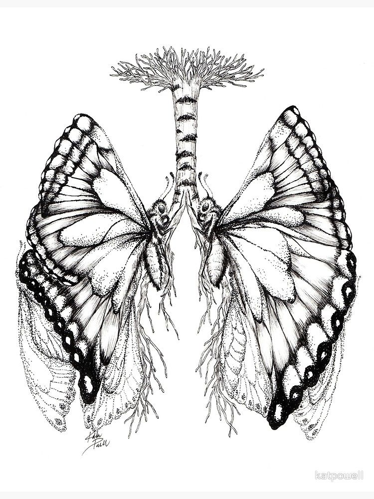 'Butterfly Lungs' Poster by katpowell