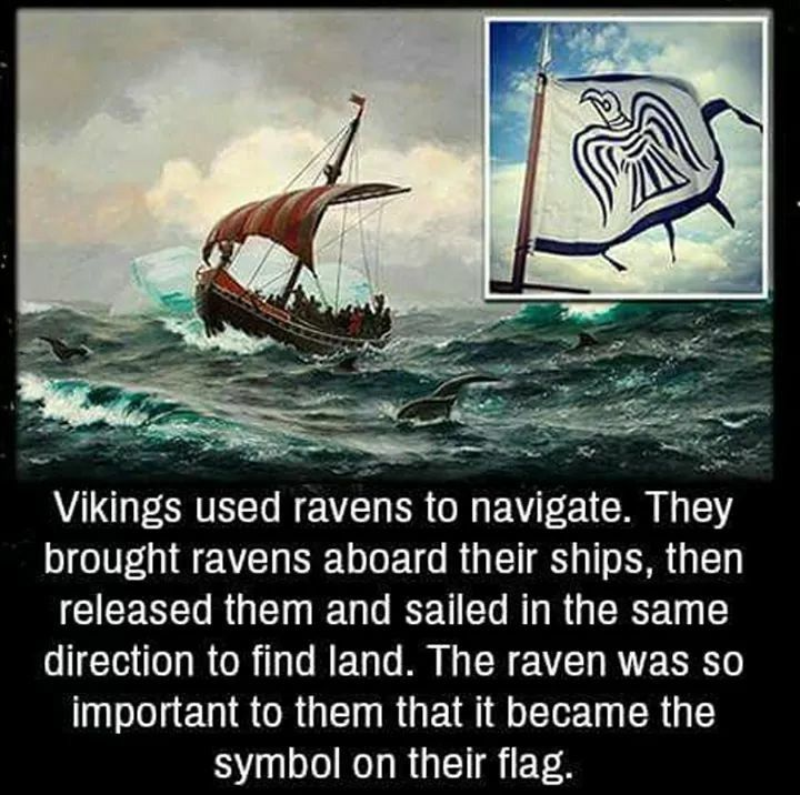 Power To Raven Mythical Creatures Pinterest Ravens Vikings Stunning Vikings Sailors Quotes