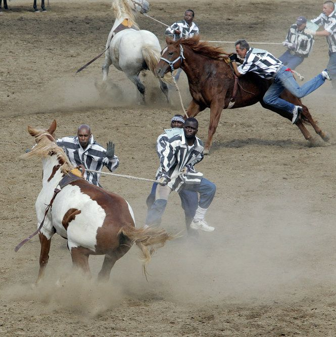 Life at Angola State Penitentiary   Equestrian Heaven From