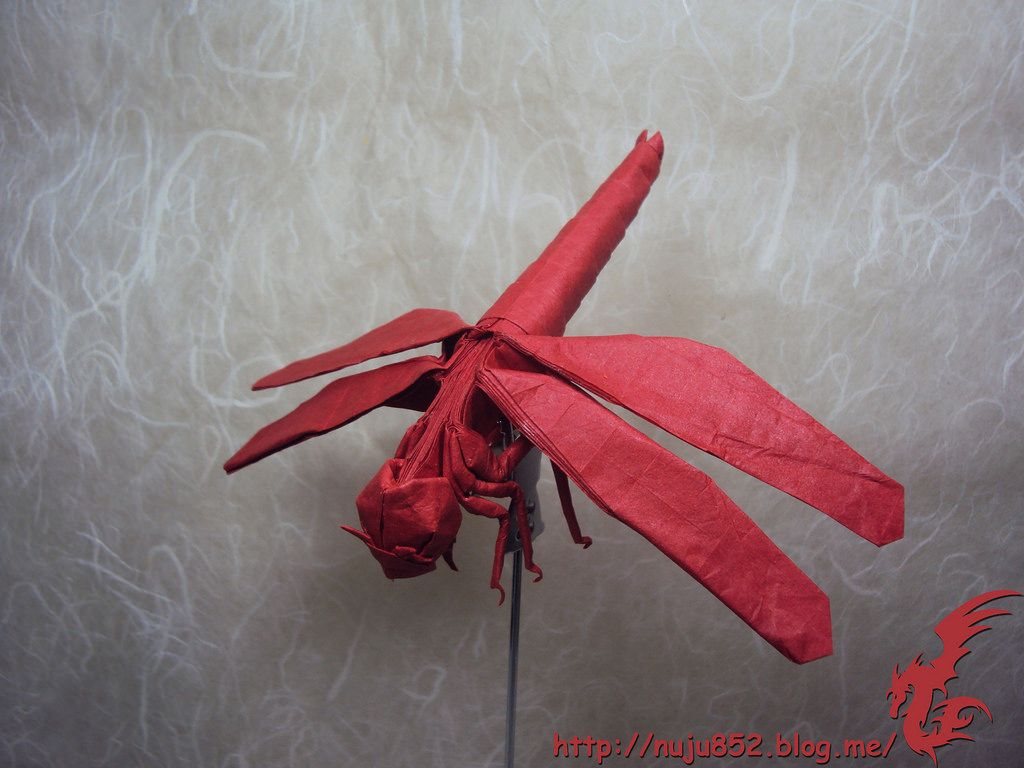 Dragonfly by rydos artsy pinterest dragonflies and origami dragonfly by rydos jeuxipadfo Image collections