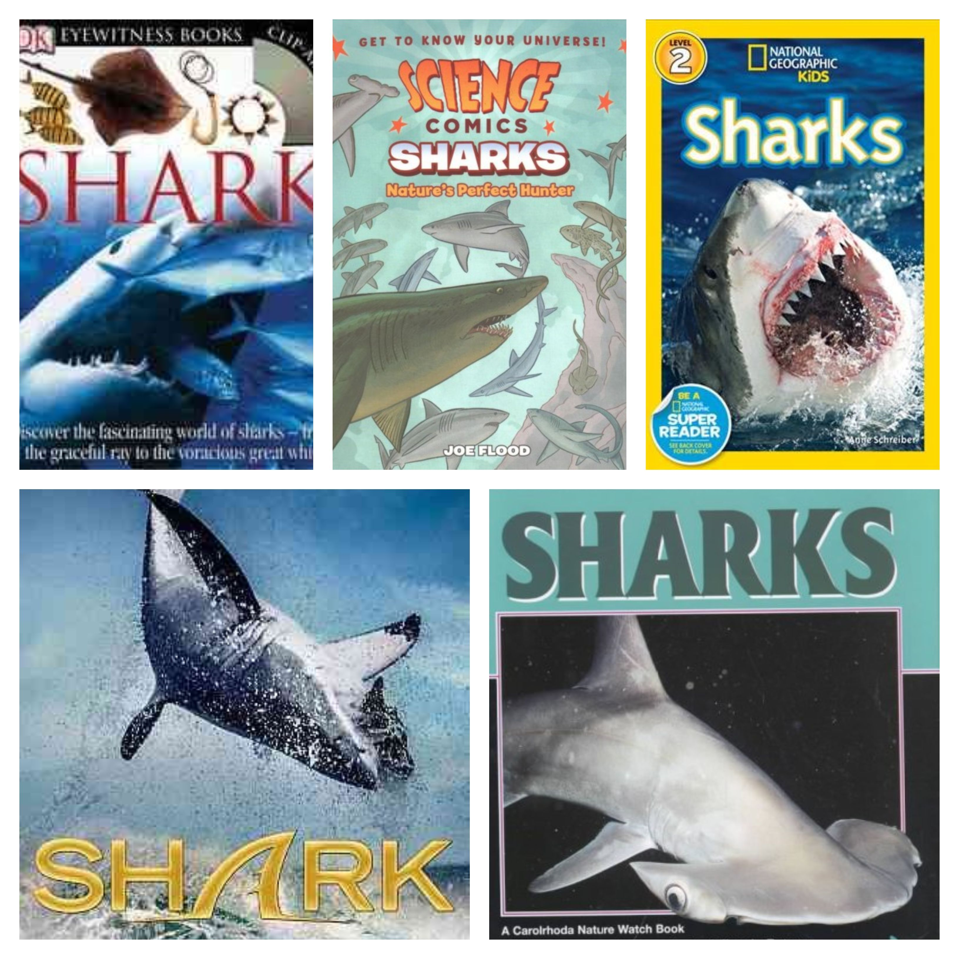 Those Of You Who Follow The Discovery Channel Know That We Are In The Midst Of The 30th Anniversary Of Shark Week C Dauphin County Fun Facts County Library