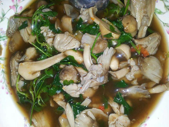 Wild mushroom soup laos style food pinterest wild mushroom cambodian food wild mushroom soup laos style forumfinder Gallery