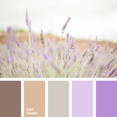 brown, cocoa, color of lavender, color of mocha, light ...
