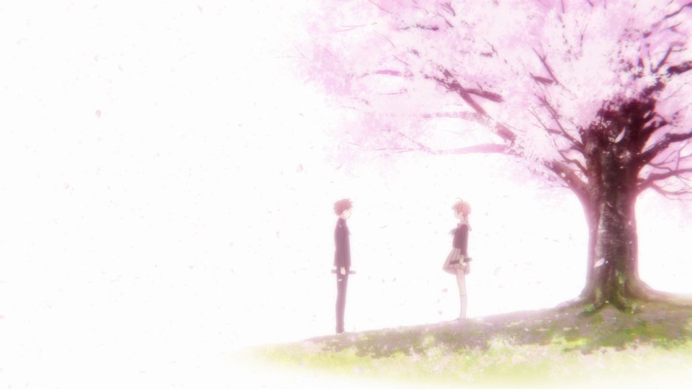 Beautiful And Relaxing Bloom Into You First Impressions Review Anime Shelter Bloom Cherry Tree Beautiful