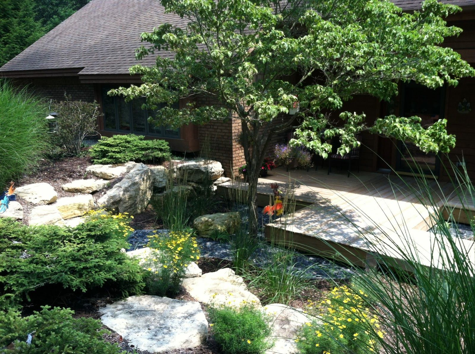 Large Of Amazing Backyard Designs