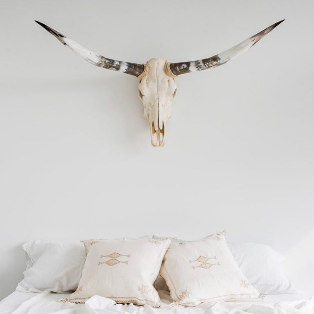 Bryar Wolf Cactus silk pillows  www.bryarwolf.com