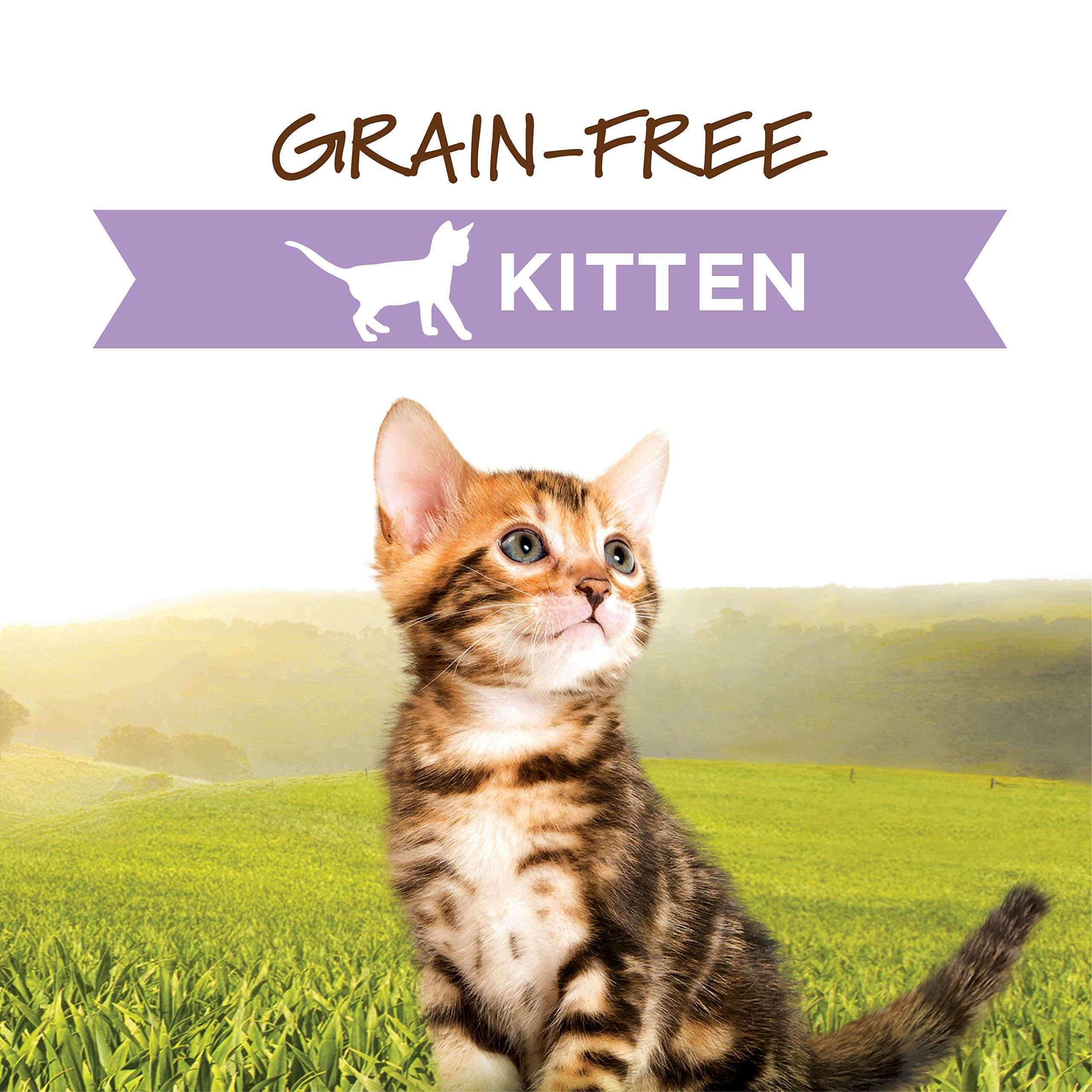 Instinct Original Kitten Grain Free Recipe Natural Cat Food By Nature S Variety Ad Grain Ad Free Kitten Instinct