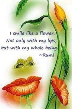 Eu sorrio como uma flor, não só com os lábios, mas com todo o meu ser. - Rumi I smile like a flower not only with my lips but with my whole being - Rumi