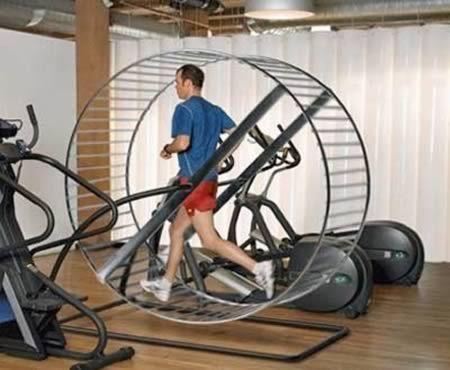 Hamster Wheel Treadmill Gym Fitness Toys Cardio