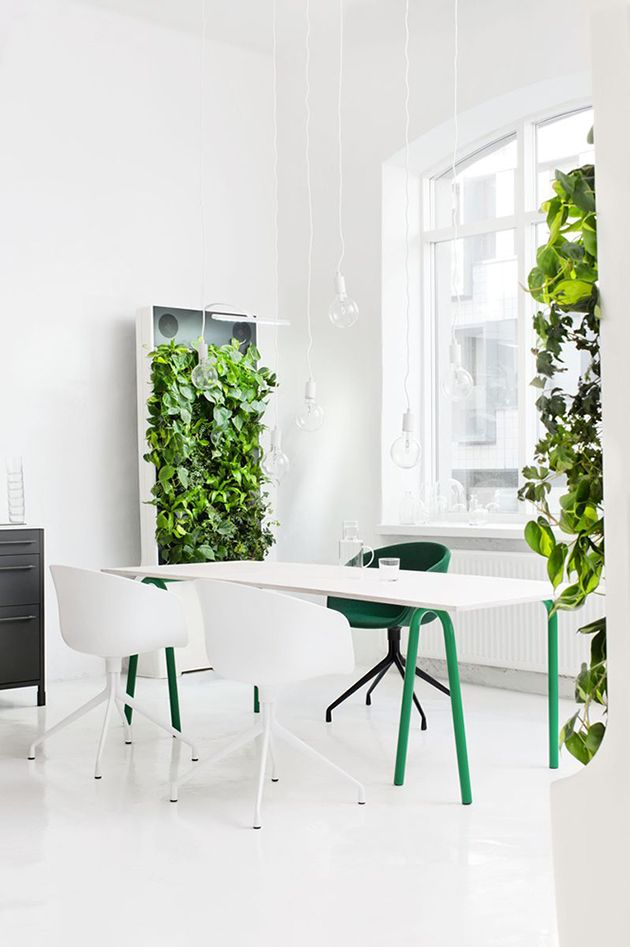 interior * dining room * white * green * lights * minimalistic * vertical gardening