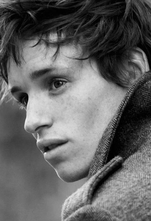"Edward John David ""Eddie"" Redmayne (born 6 January 1982) is an English actor, singer and model."
