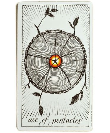 Ace of Pentacles - Tarot of the Wild Unknown | Pentacles