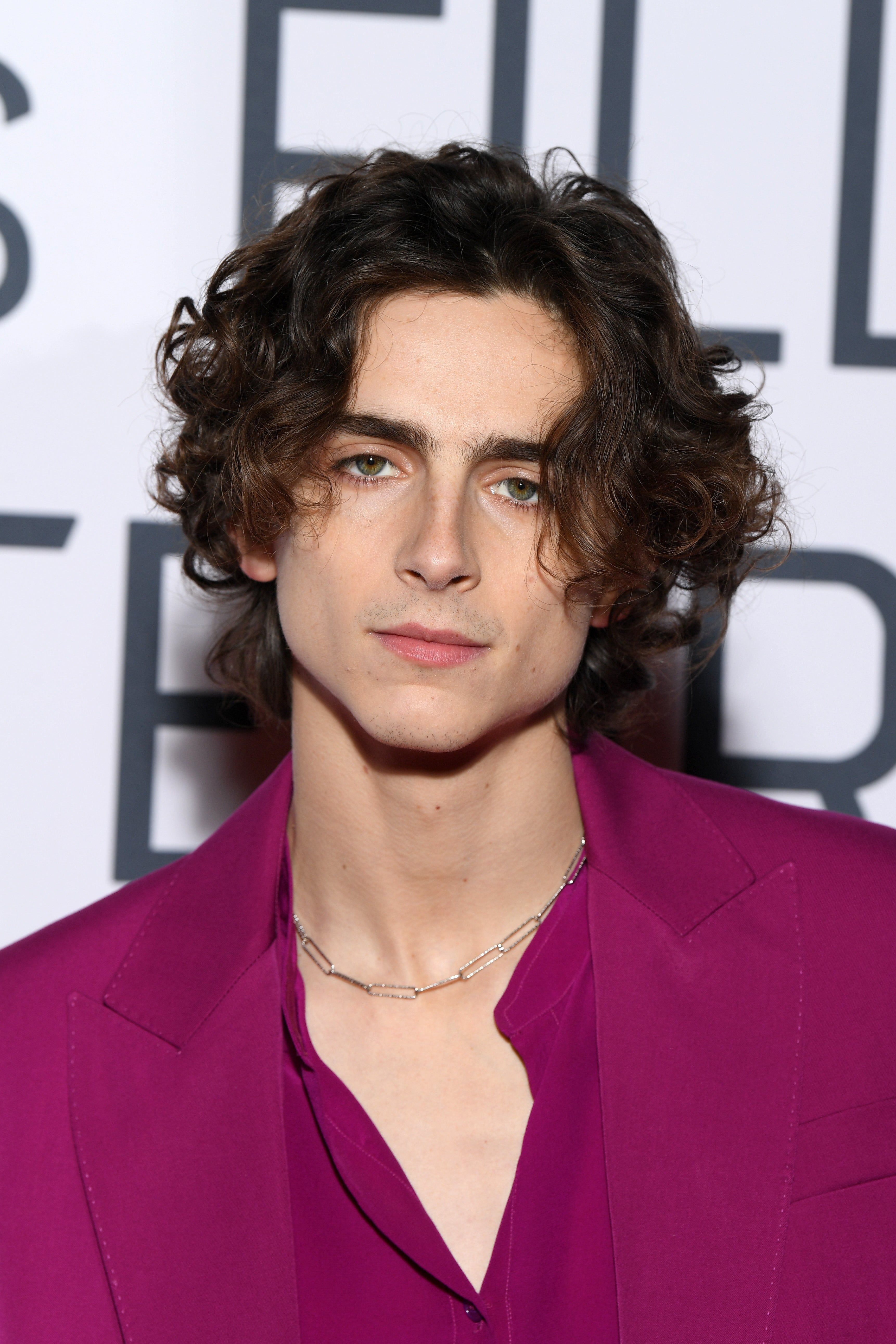 Timothee Chalamet Is In Talks To Play Bob Dylan It Couldn T Be More Perfect In 2020 Timothee Chalamet Pretty People Celebrities