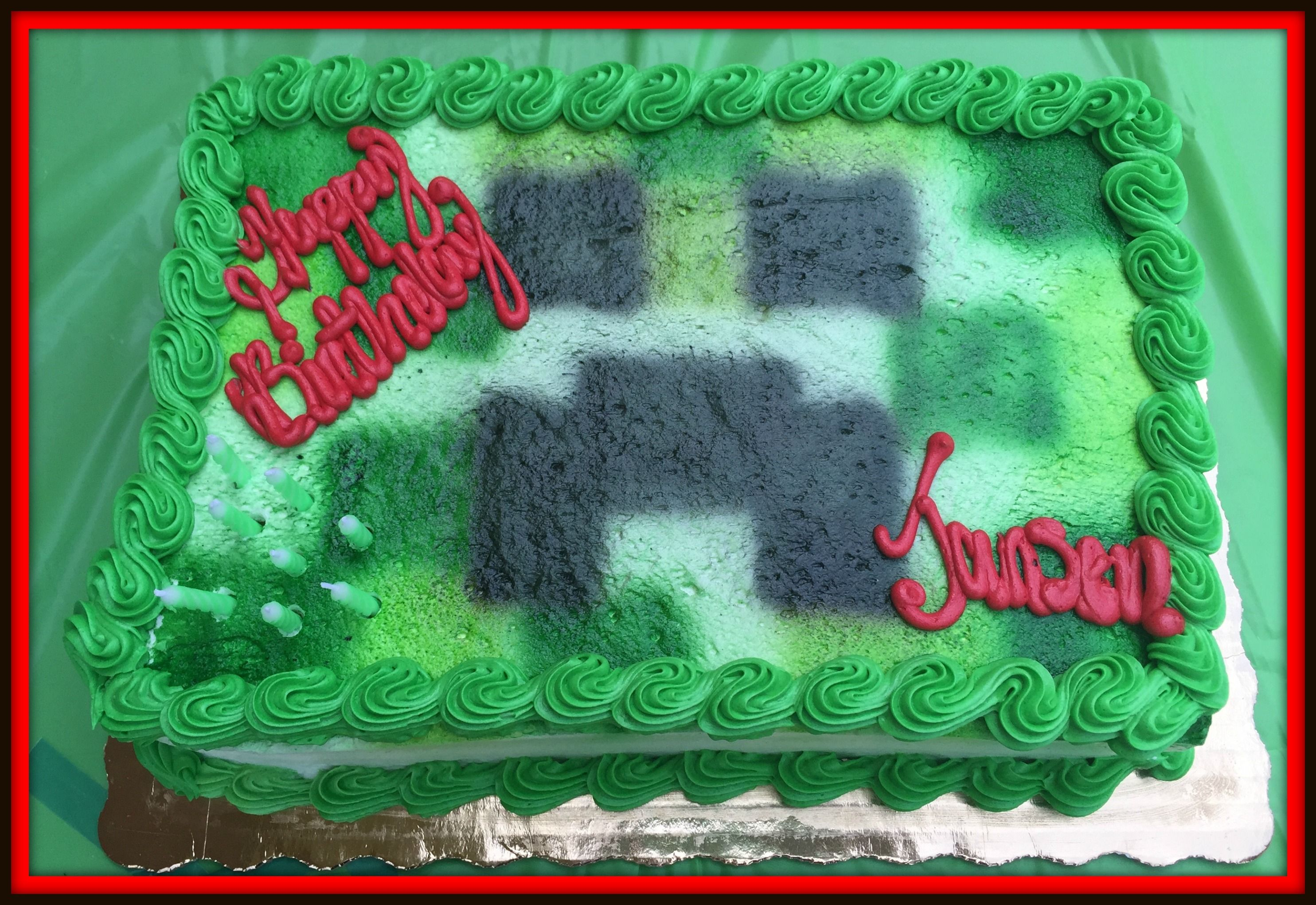 Minecraft Cake From Publix Bakery