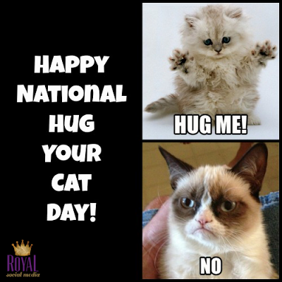 Royal Social Media | Hug your cat day, Cat day, Grumpy cat meme