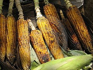 Grilled Maize Corn Stock Photography - Image: 8247292