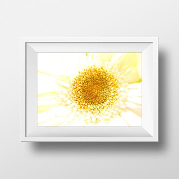 Amazing Daisy Wall Art Composition - Wall Painting Ideas ...
