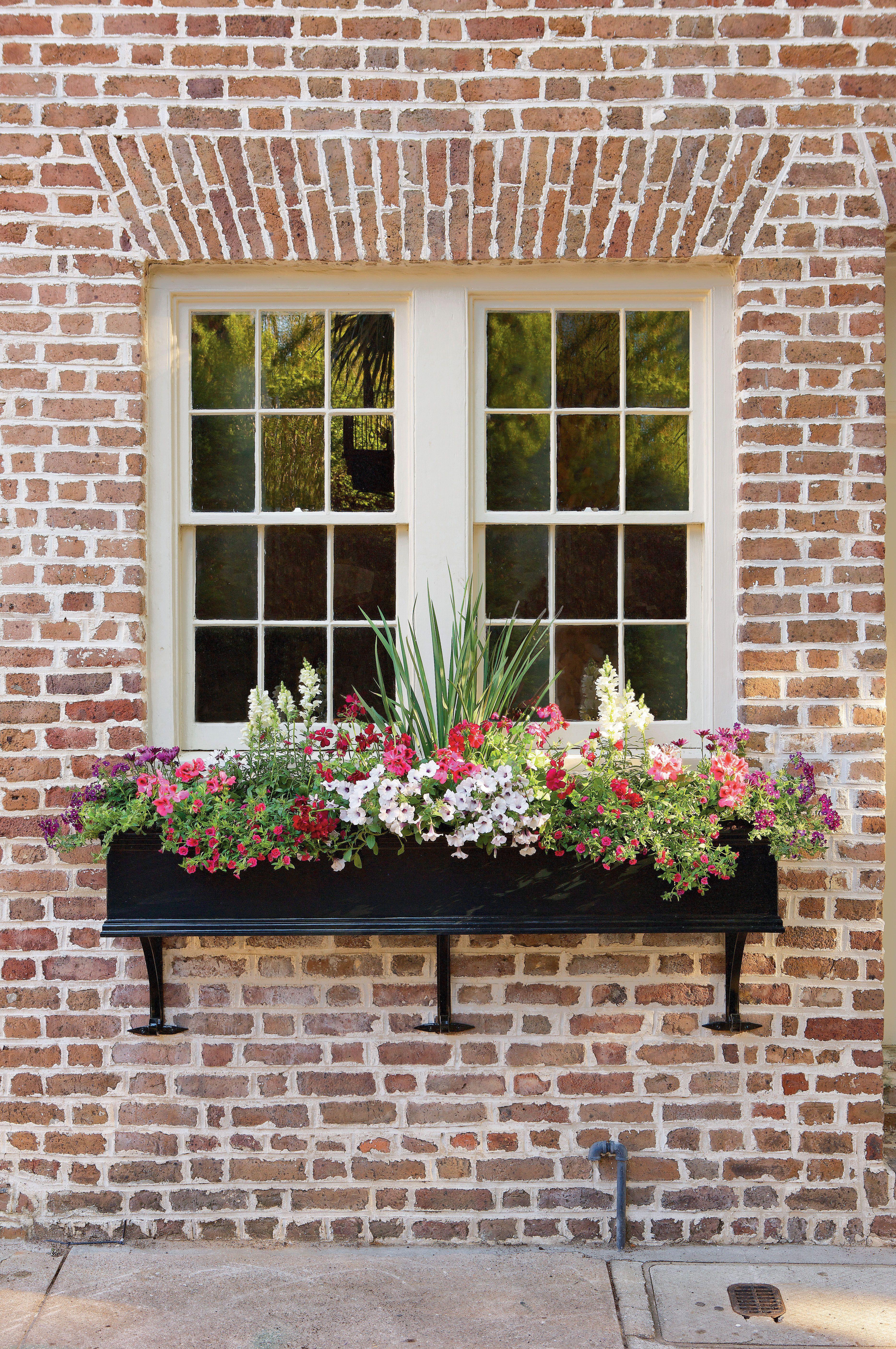 Add Charm with Window Boxes Window box flowers, Window