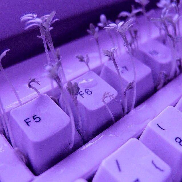 New Theme Purple Themepage Aesthetic Tumblr