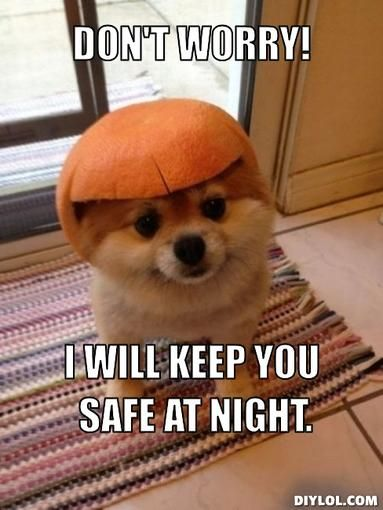 Hero Puppy Meme Generator Diy Lol Puppy Meme Funny Puppy Pictures Funny Animal Memes