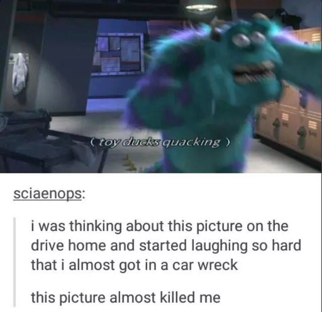 Im Actually Dying This Will Probably Happen To Me Hilariousness Pinterest Memes Random And Humor