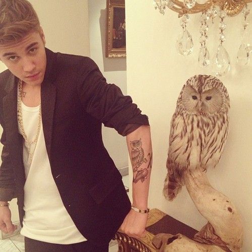 Aw Justin Comparing His Owl Tattoo With That Owl So Cute Imagens Do Justin Bieber Tatuagens Do Justin Bieber Justin Bieber