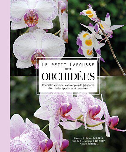 Pdvlivregirls Trinidada Download Gratuit Ebook Le Petit Larousse Des Le Petit Larousse Telechargement Orchidee