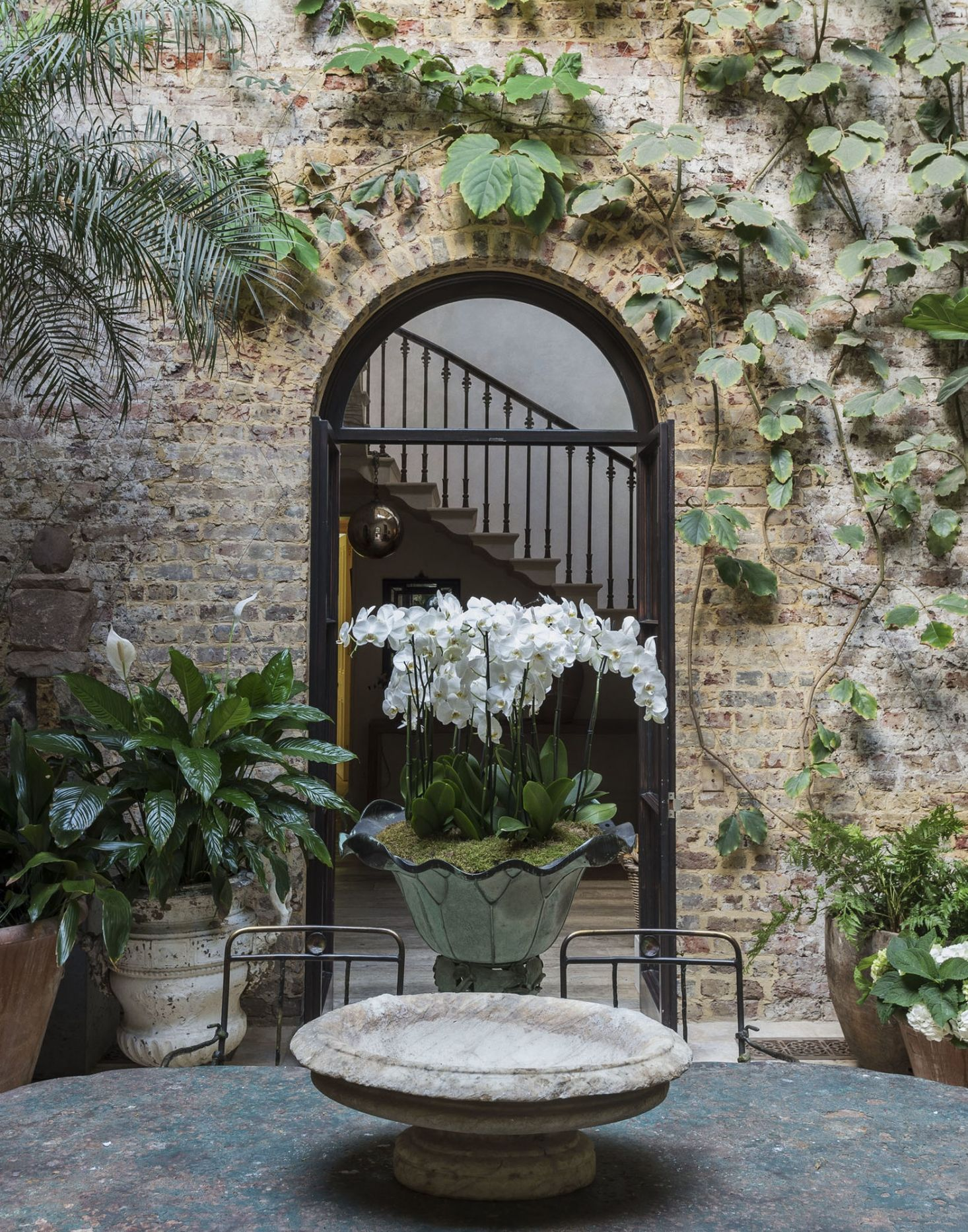 Among the Orchids: Designer Rose Uniacke at Home in London - Gardenista #wintergardening