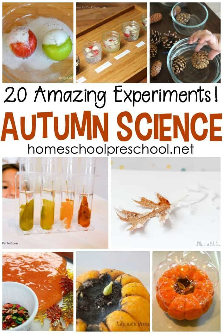 20 Engaging Fall Science Experiments for Preschoolers