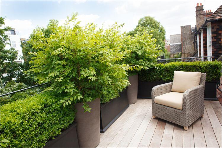 Dachterrasse mit Holzdielen und kleine Hecke als Sichtschutz ...