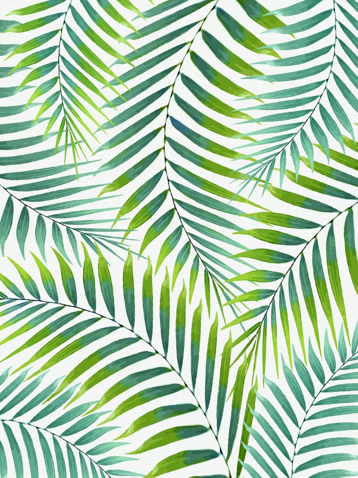 Watercolor Tropical Green Palm Leaves On A White Background With