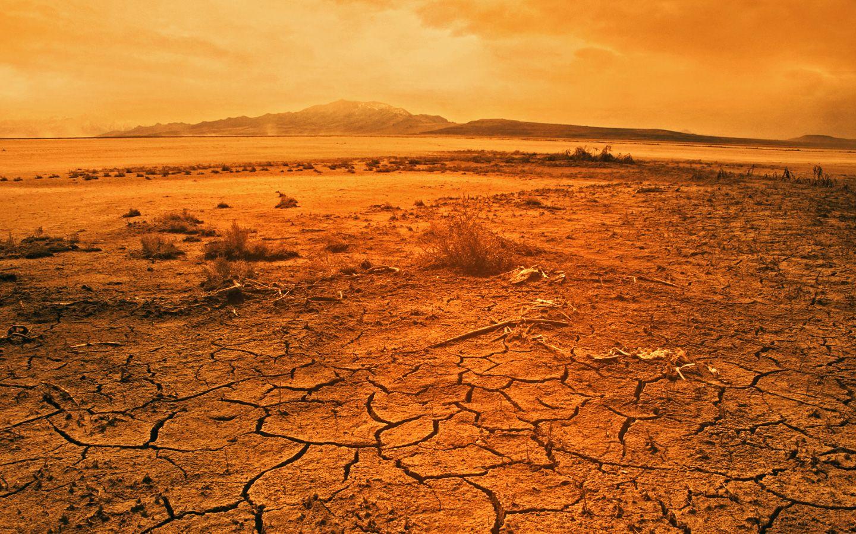 Lo Debar Desert Landscaping Landscape The Sky Is Falling