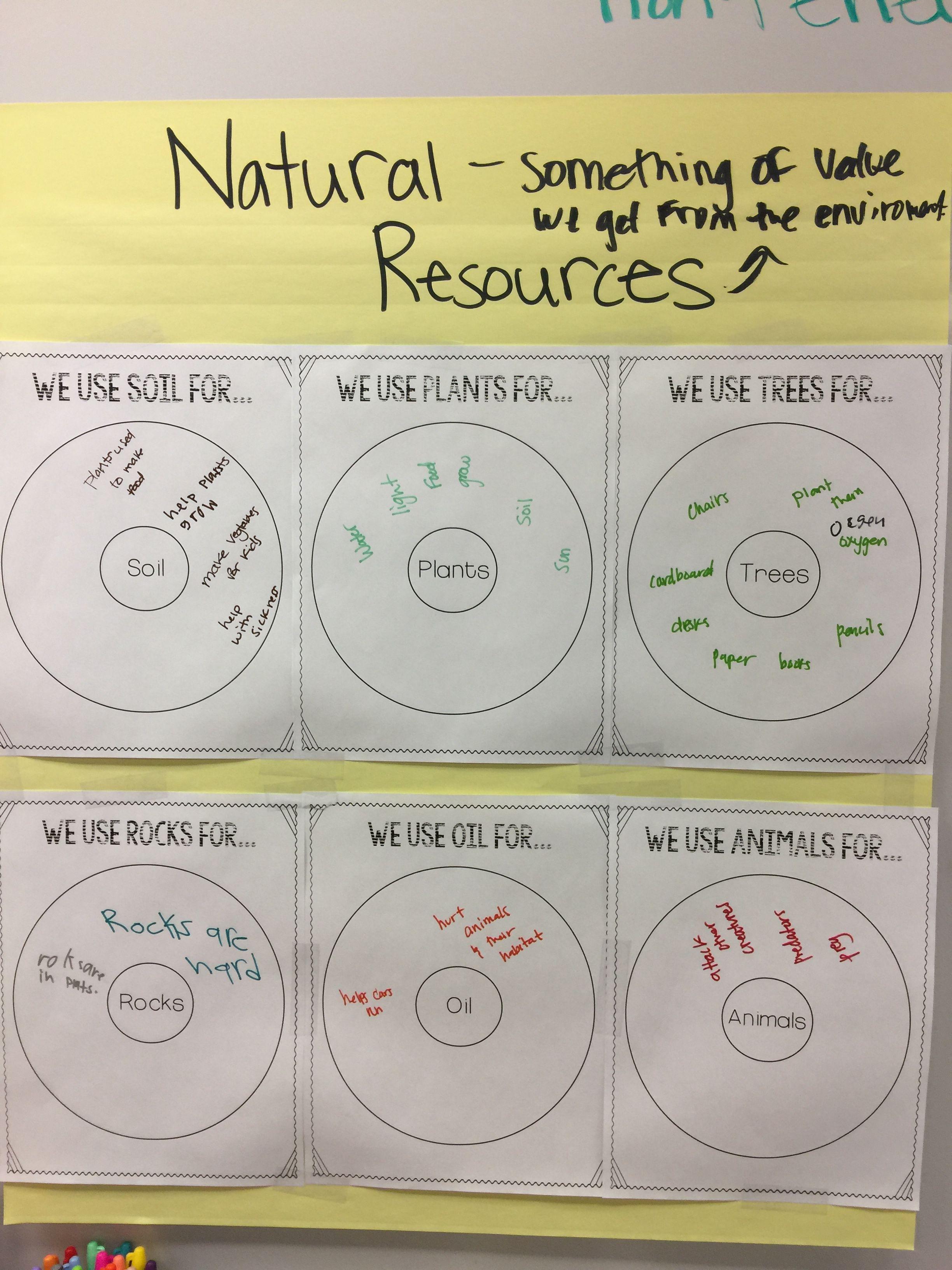 Natural Resources Anchor Chart