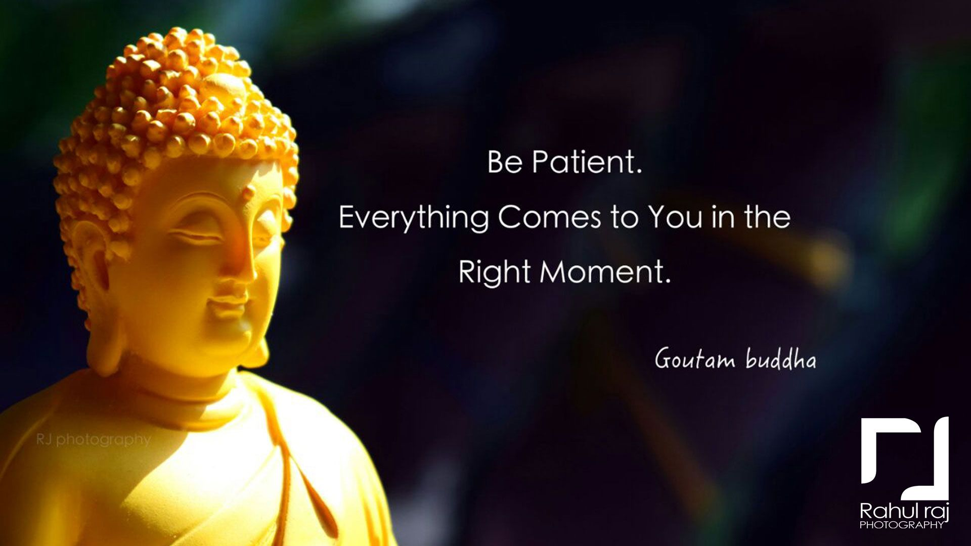 STUNNING ATTRACTIVE BUDDHA QUOTES RAHUL RAJ RJ PHOTOGRAPHY