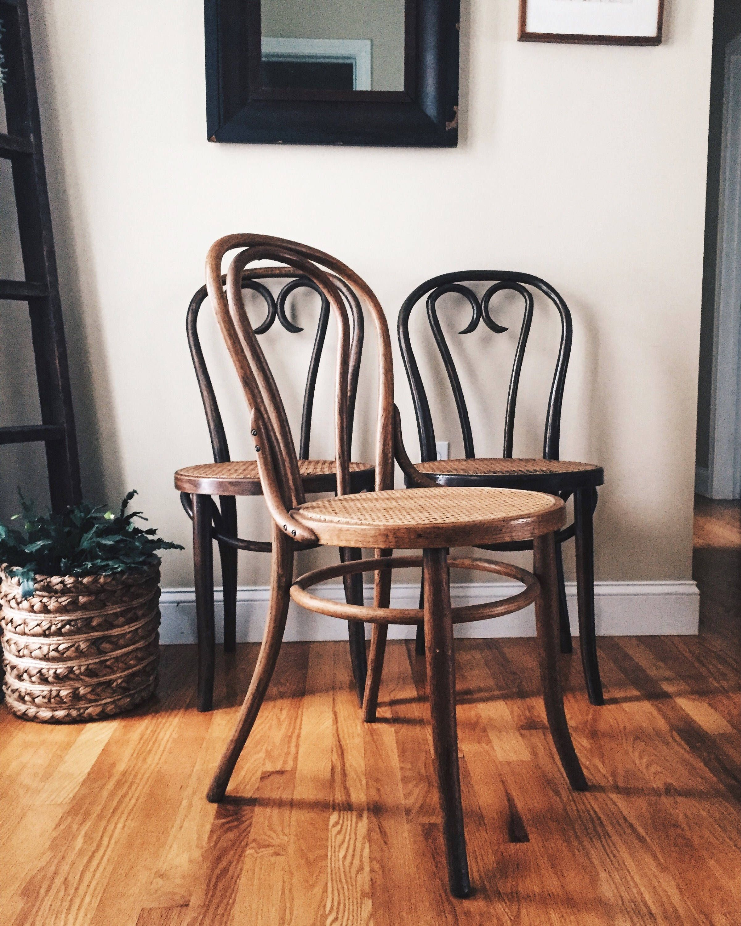 Antique thonet style bentwood chairs with cane seats antique wood