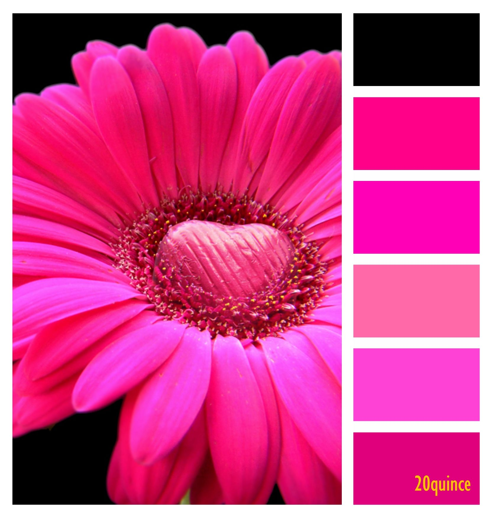Pin by Z 🌸 on COLOR PALETTE [3] | Pinterest | Room colors, House ...