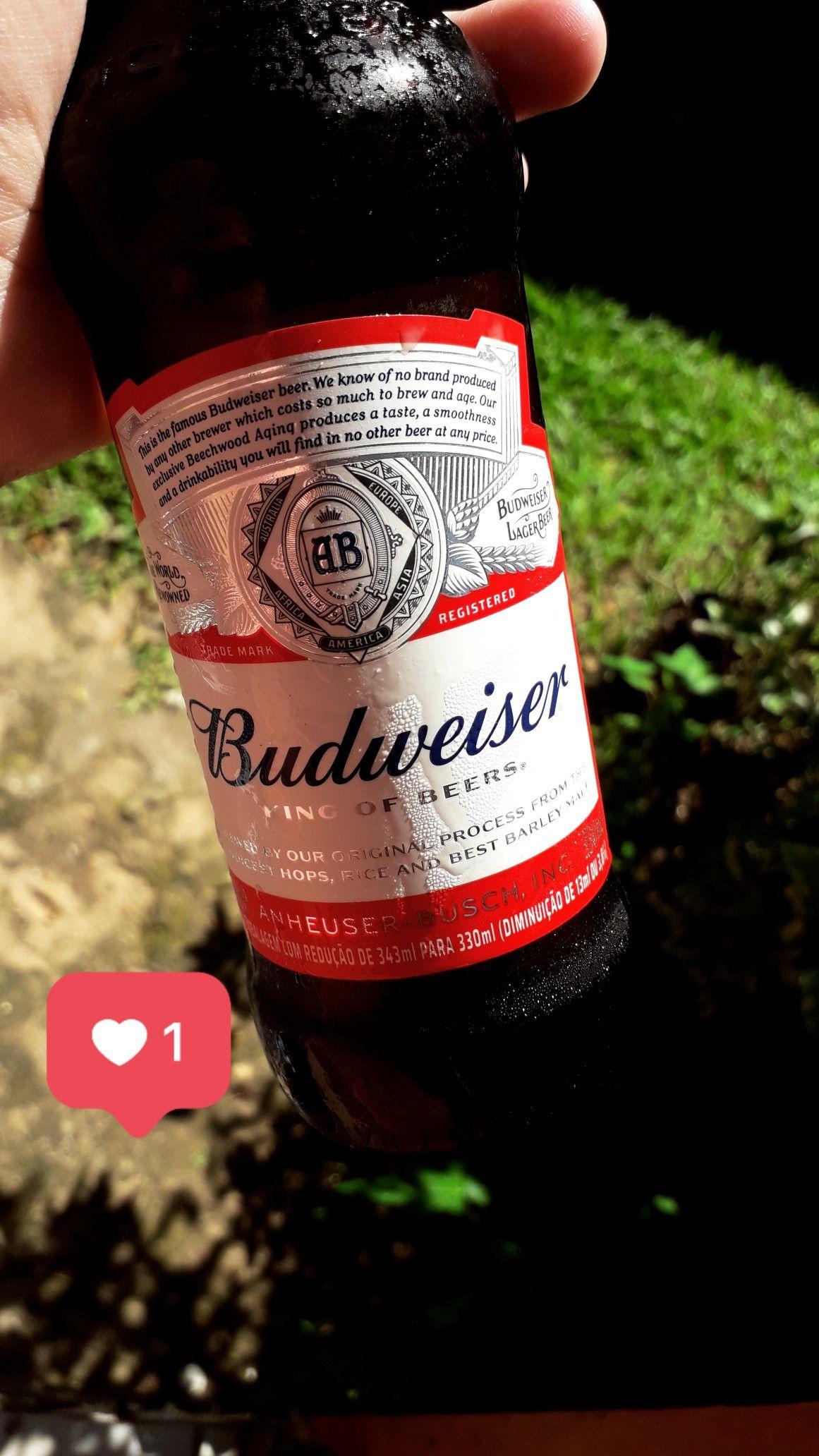 Follow Ig Niitiiiin Foto De Cerveja Gelada Foto De Cerveja Poster De Cerveja