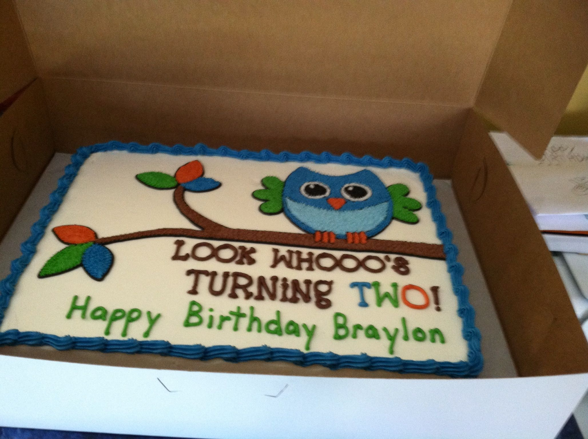 Birthday Cake Owl Cake Boy Owl Cake