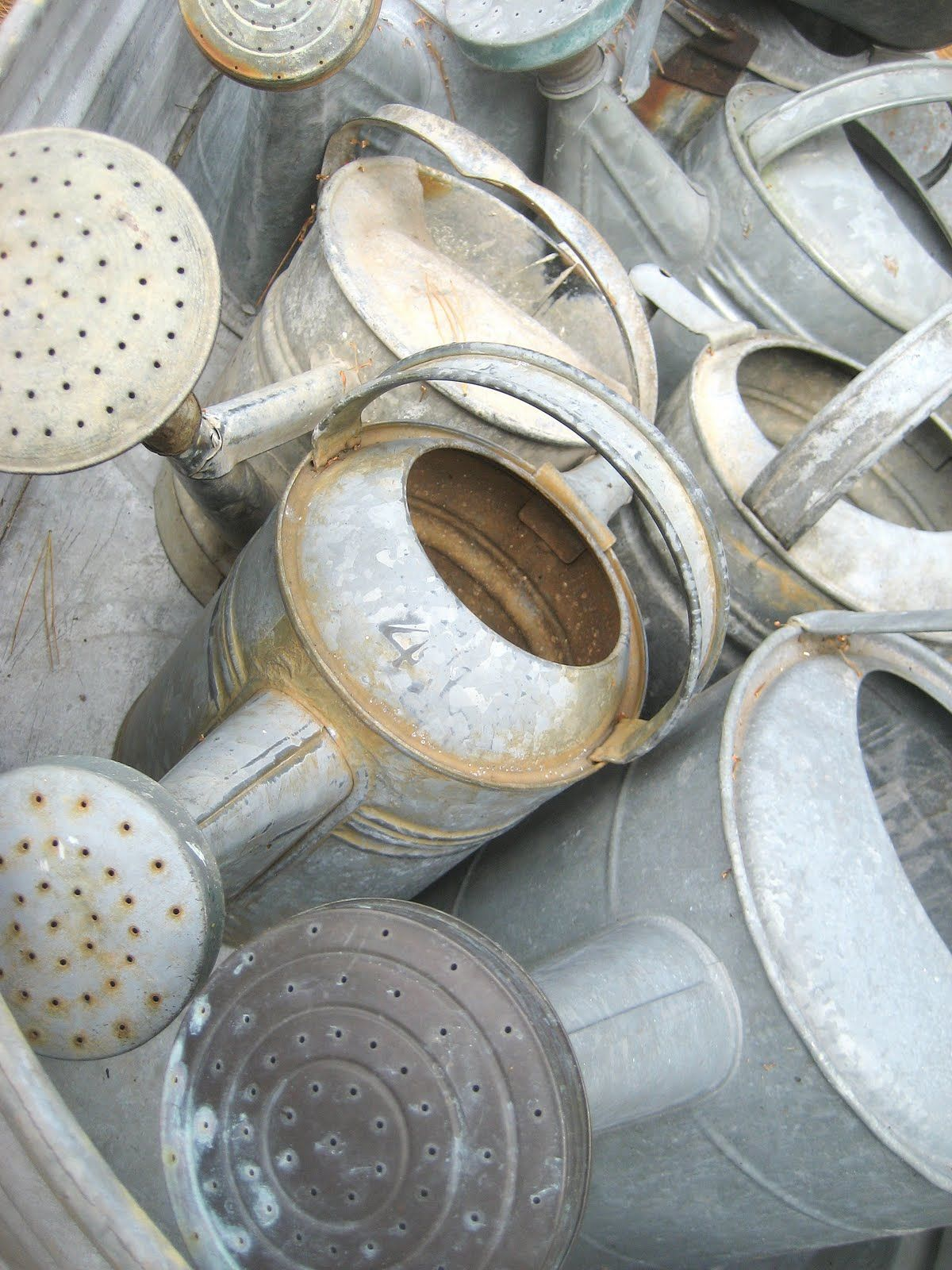 zinc watering cans