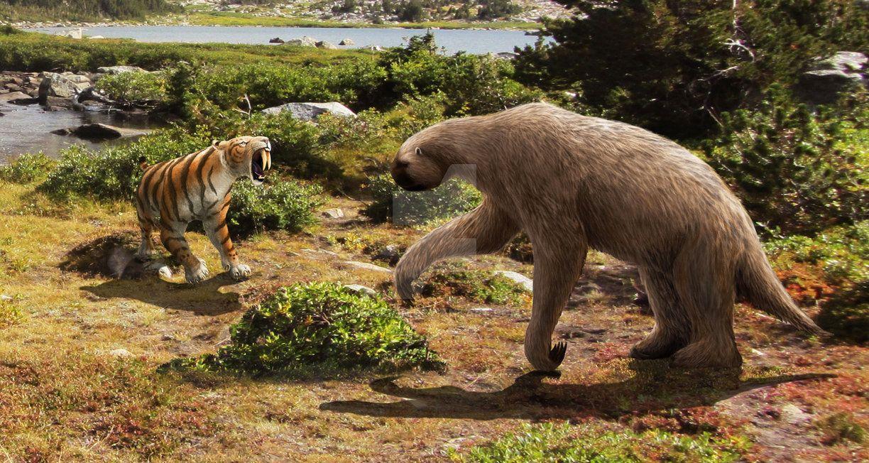 Smilodon Face By Pyroraptor42 On Deviantart: Smilodon And Megalonyx By Leogon On DeviantArt